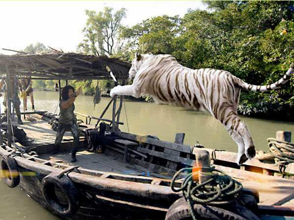 Movie Review: Roar - Tigers Of The Sundarbans