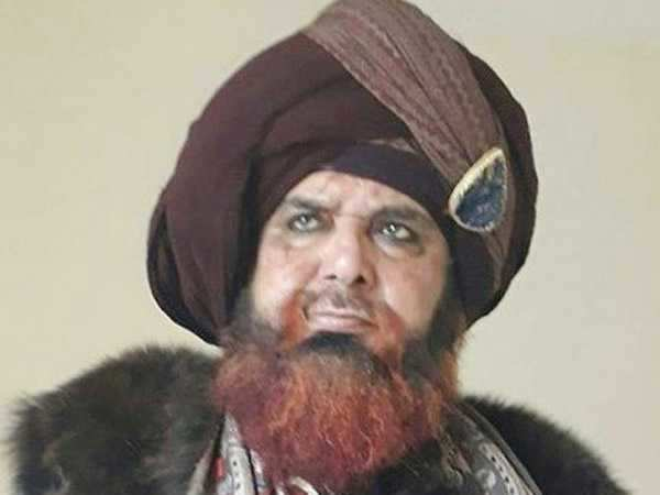 Raza Murad deletes his look from Padmavati soon after sharing it