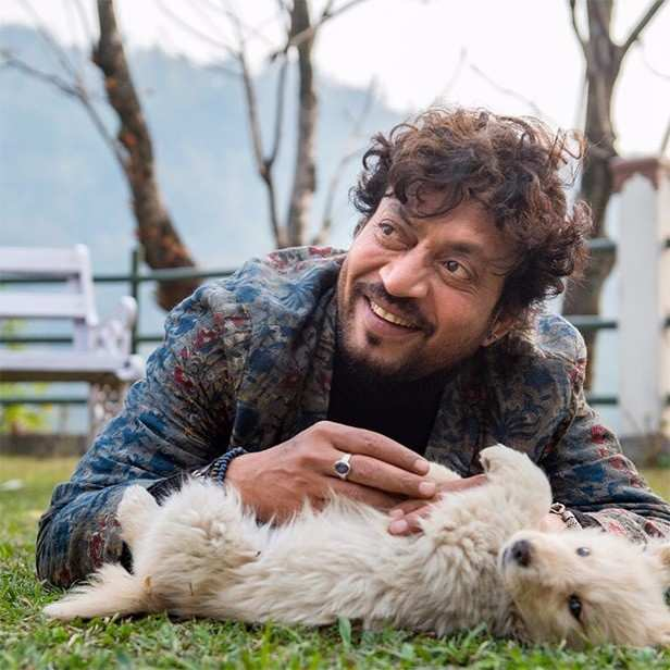 Angrezi Medium, Shah Rukh Khan, Angrezi Medium, Hindi Medium 2, Salman Khan, Dabangg 3, Sonakshi Sinha, Aishwarya Rai Bachchan, Varun Dhawan, Coolie No 1