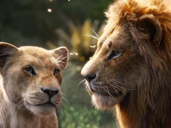 The Lion King crosses the Rs 75 crore mark at the box-office