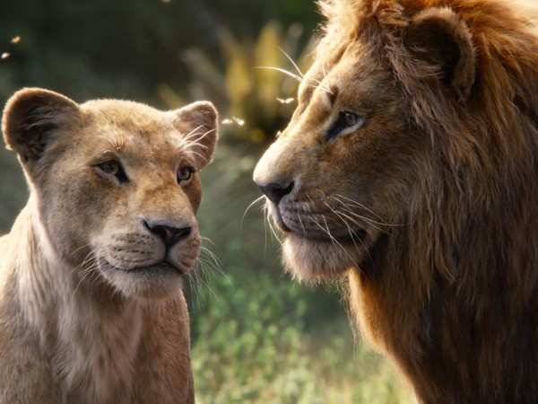 The Lion King earns big at the box-office on day one