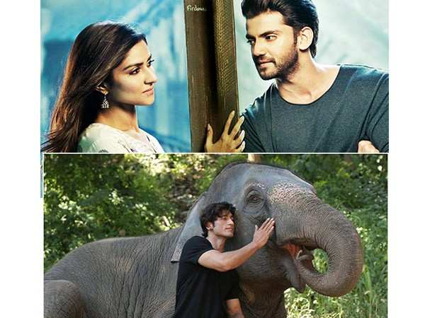 Here's how Junglee and Notebook have fared at the box-office so far