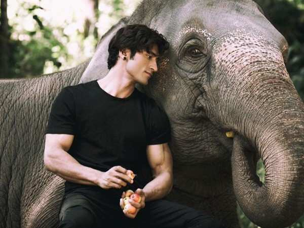 Vidyut Jammwal's Junglee to clash with Salman Khan Production's Notebook