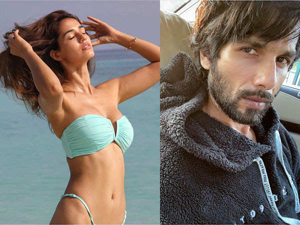 Shahid Kapoor walks out of Yoddha due to creative differences?
