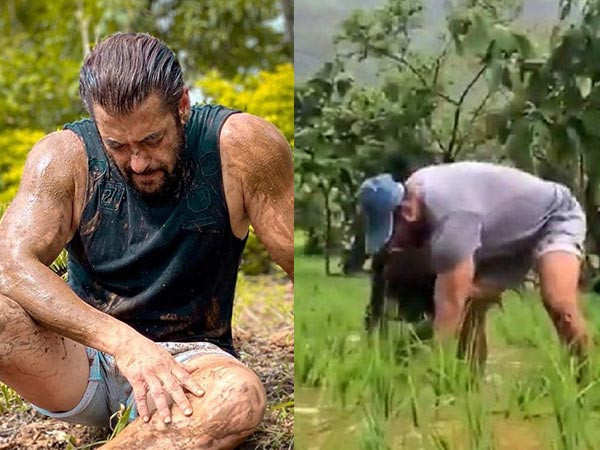 Salman Khan gets into rice-plantation and shares a super-cool video too