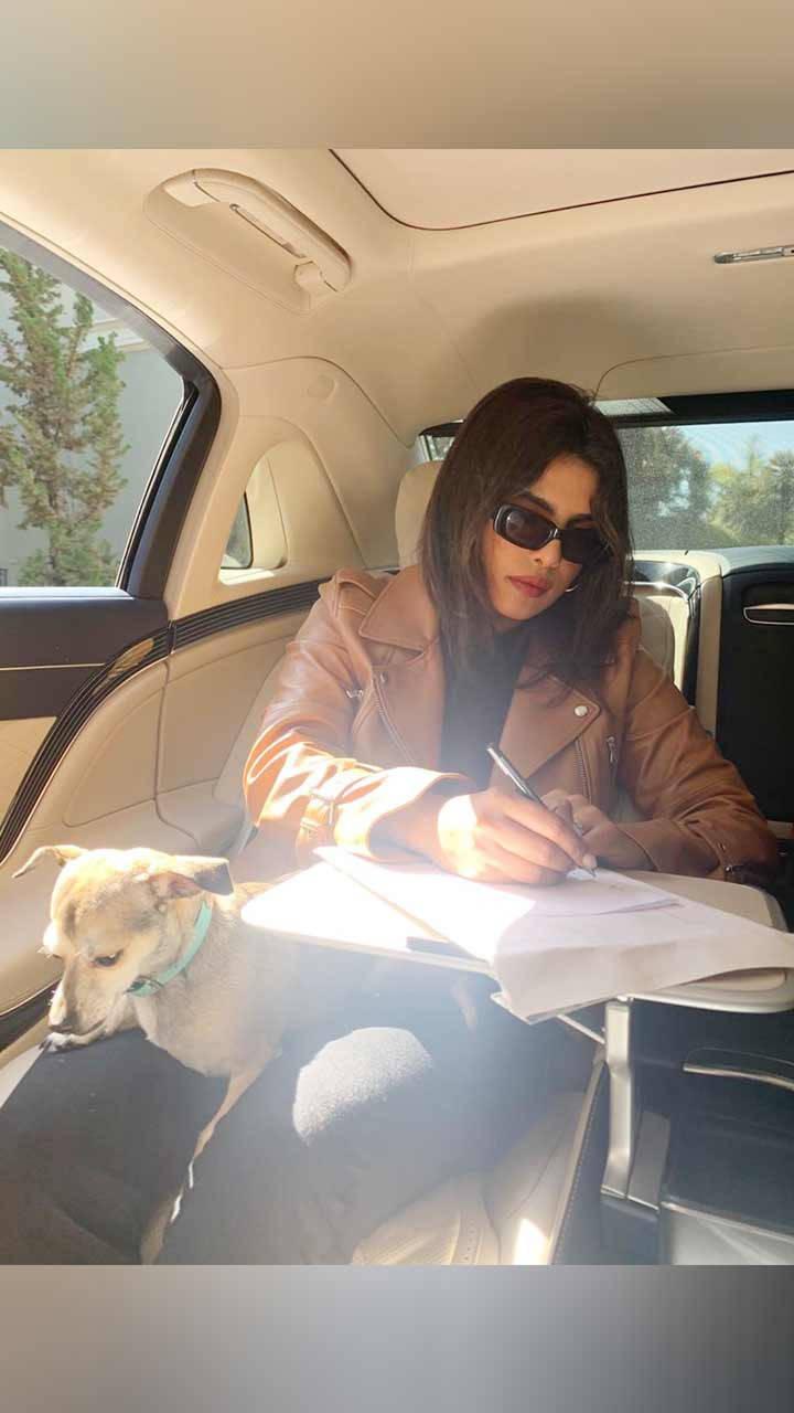 Actresses whose pets are social media sensations