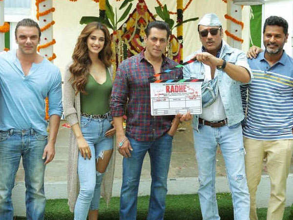 Greatful for the opportunity given to me. - Disha Patani on Salman Khan