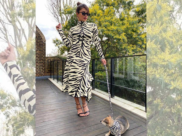 This picture of white Tiger aka Priyanka Chopra Jonas with her dog is too adorable
