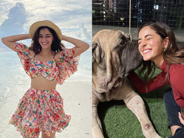 This picture of Ananya Panday clicked by Alia Bhatt is too cute