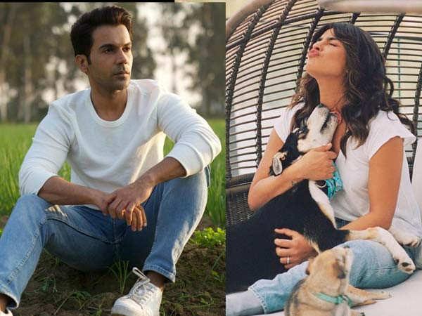 Rajkummar Rao reveals he is in awe of his co-star Priyanka Chopra Jonas