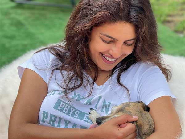 Priyanka Chopra Jonas' pictures with her pets are adorable