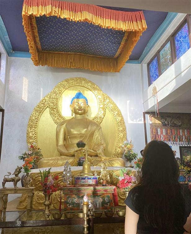 Sara Ali Khan Radhika Madan
